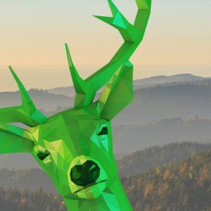 deer: Carsharing mit ganz viel Power