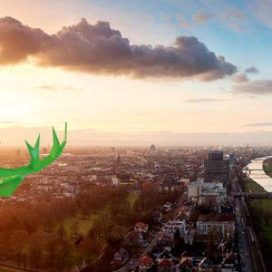deer e-Carsharing: Der grüne Hirsch erobert Großstädte